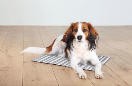 Biało szara mata chłodząca dla psa Trixie 65 x 50 cm