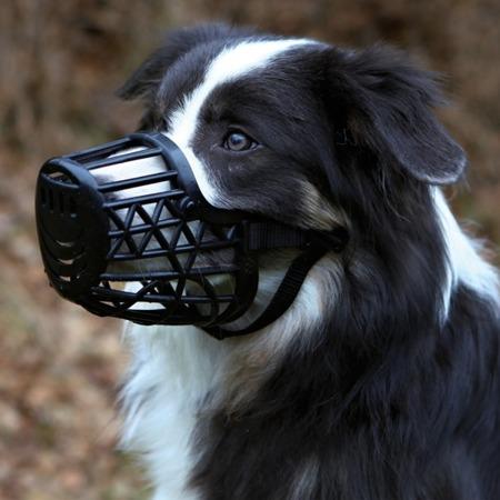 Plastikowy, czarny kaganiec dla psa