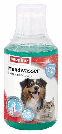Płyn do pielęgnacji jamy ustnej i zębów dolewany do picia Mundwasser 250ml