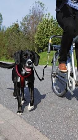 Smycz rowerowa dla psa