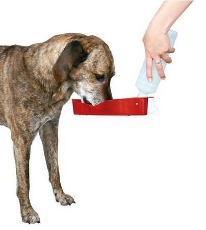 Butelka z miską - bidon turystyczny - dla psa - 500 ml